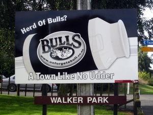 "Bulls, ""A Town Like No Udder"""