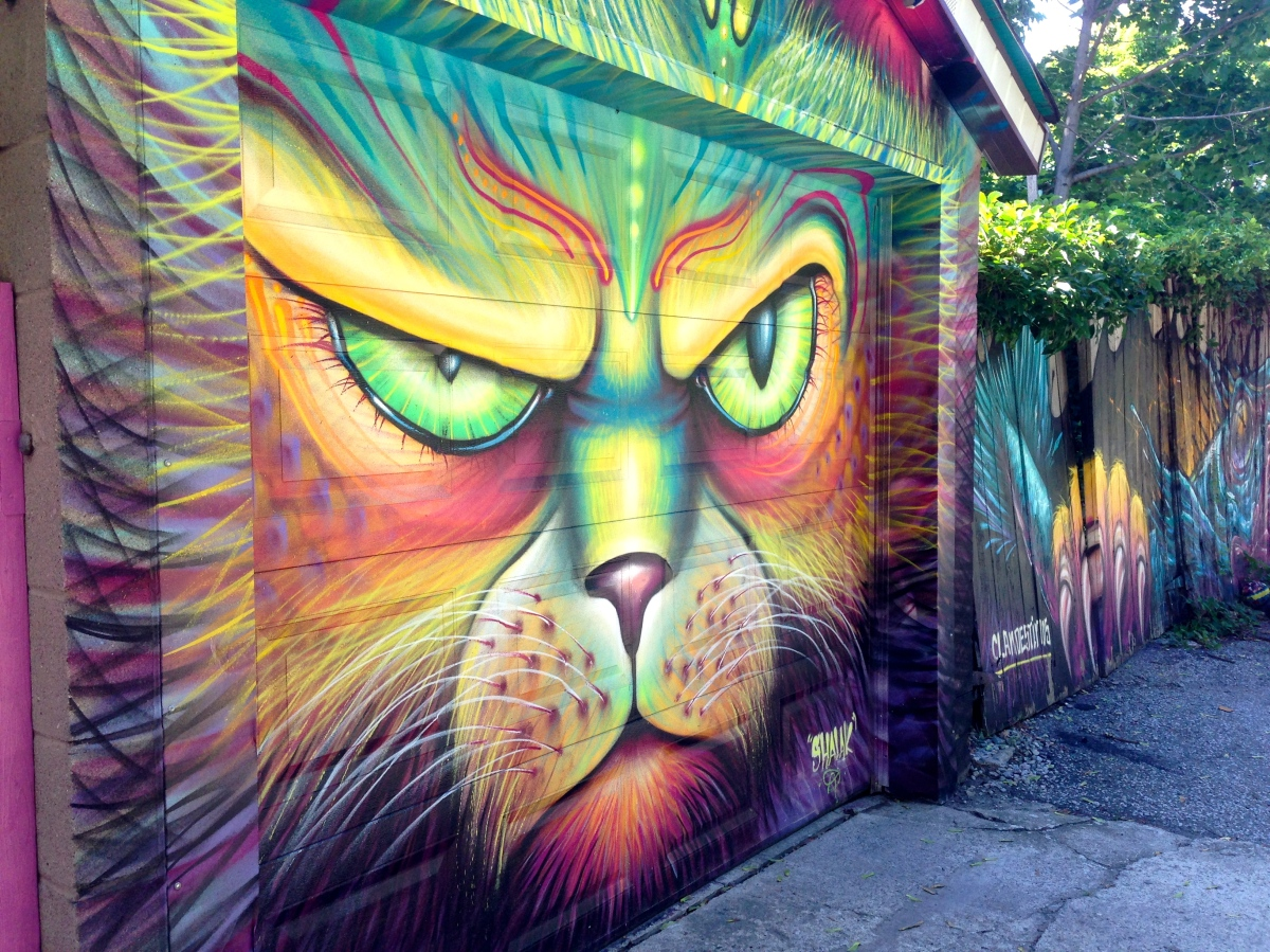 The Graffitied Garages of Peperonata Lane
